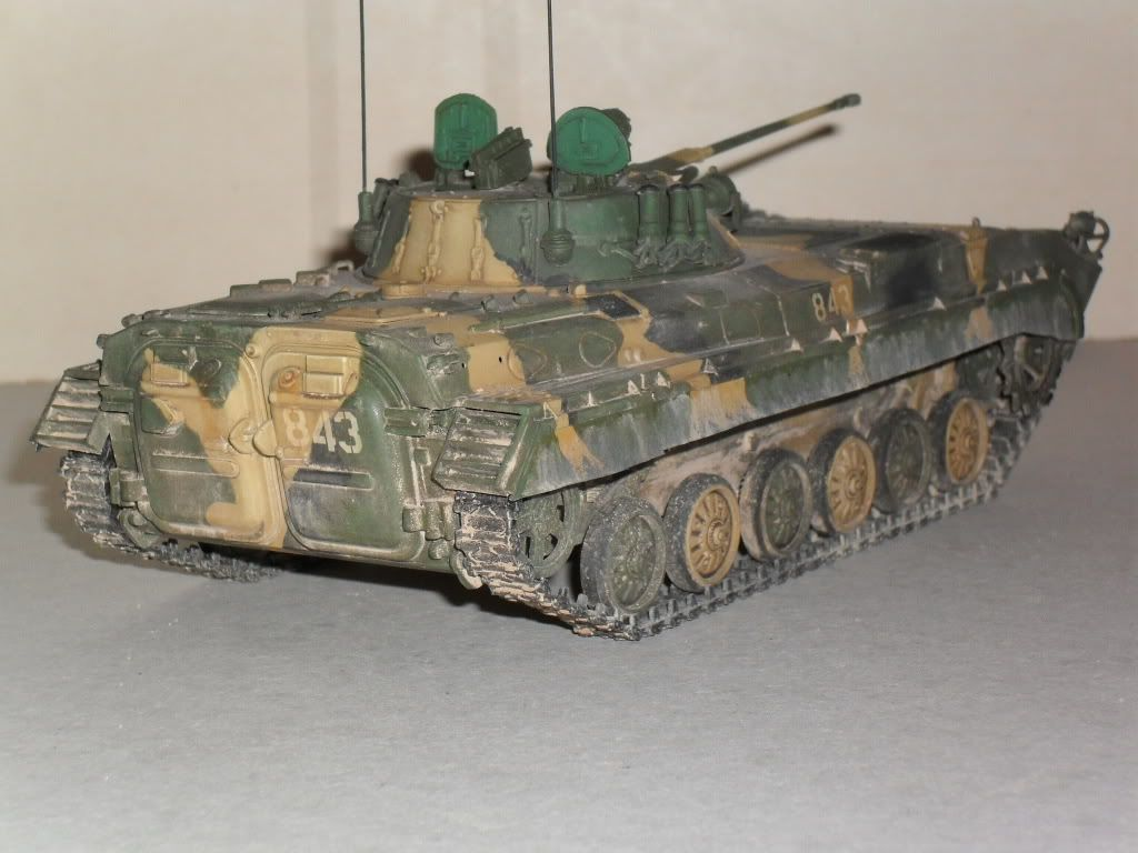 BMP-2 Géorgie SDC10287