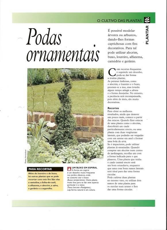 PODAS ORNAMENTAIS Digitalizar0007