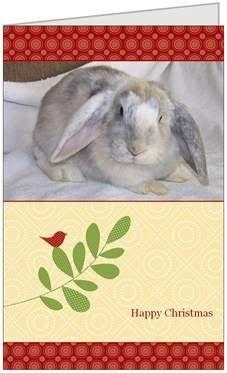 Honeybunnies Christmas Cards Card1