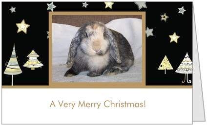 Honeybunnies Christmas Cards Card3