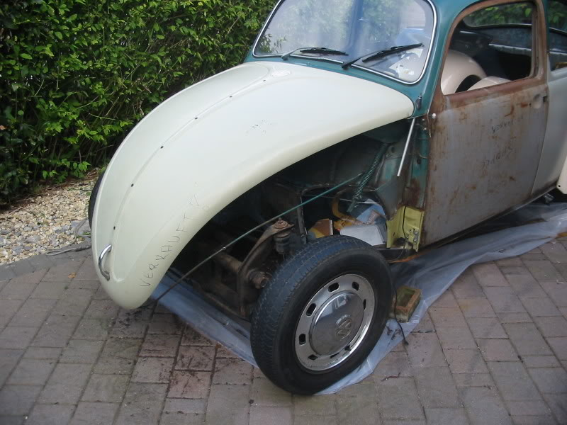 """The Joker 67""  Bug resto  IMG_1185"
