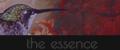 The Essence {Afiliación élite} 120x50