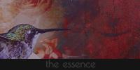 The Essence {Afiliación élite} 200x100