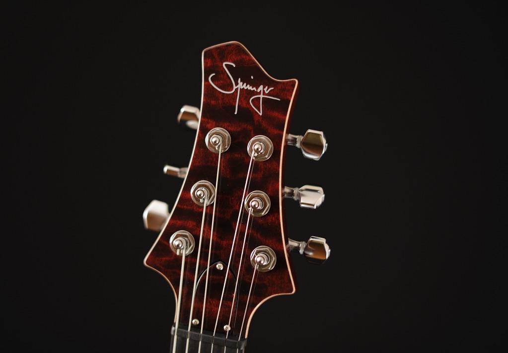 [LUTHIER] Springer Guitars - Page 4 _SEB9033