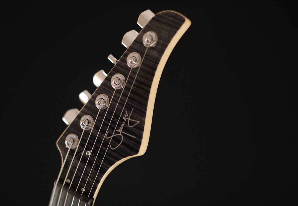 [LUTHIER] Springer Guitars - Page 4 _SEB90792