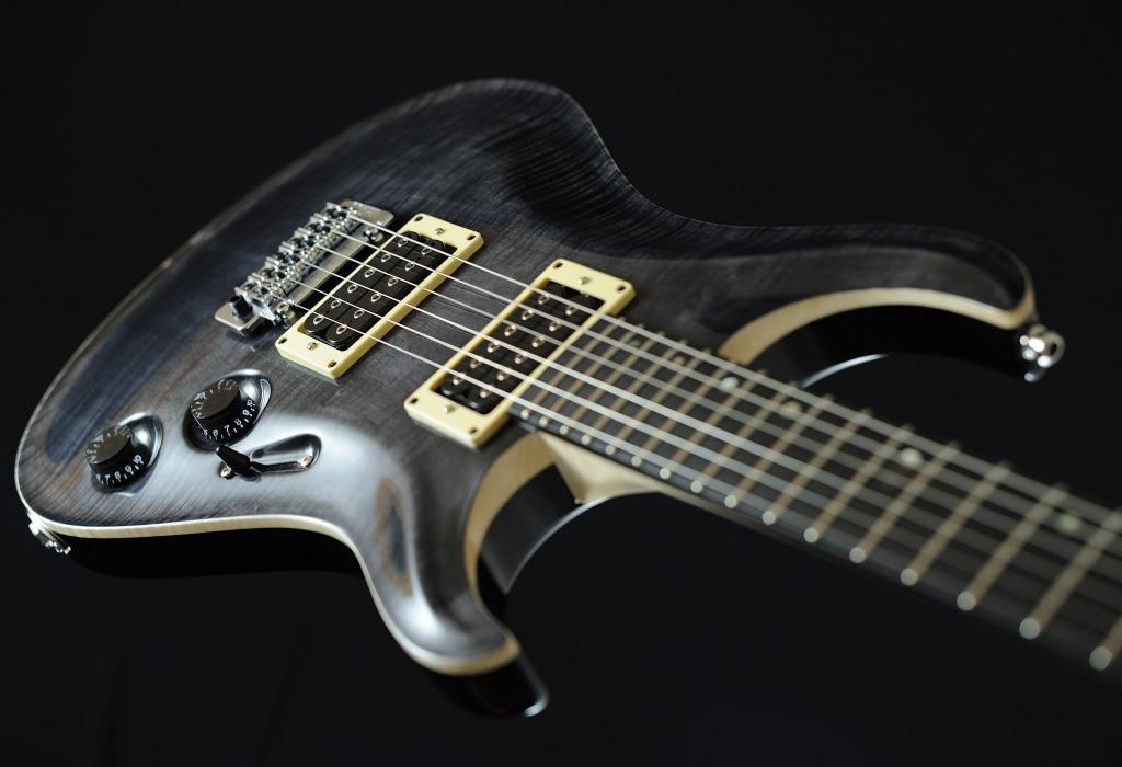 [LUTHIER] Springer Guitars - Page 4 _SEB9112