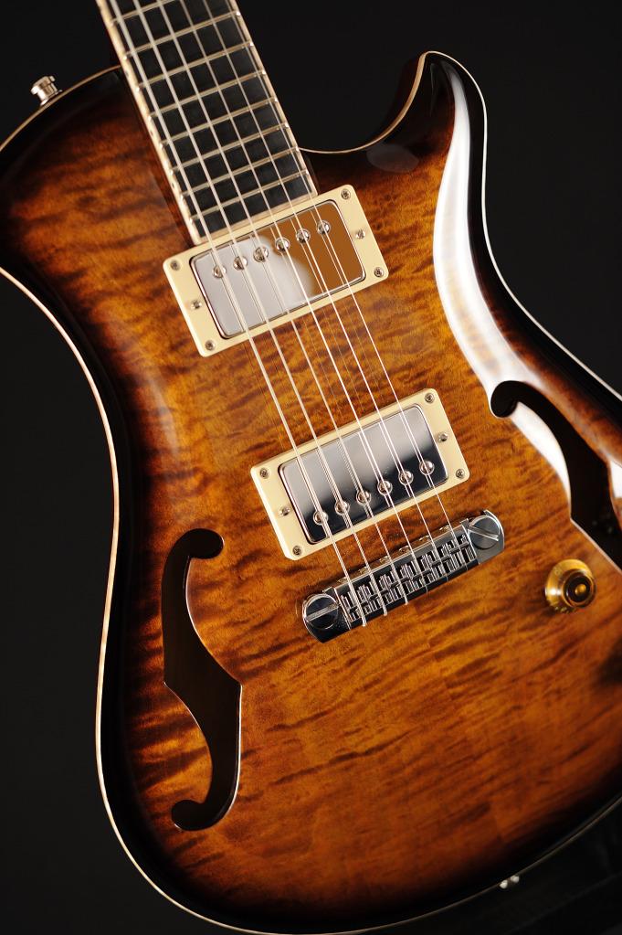 [LUTHIER] Springer Guitars - Page 4 _SEB9129