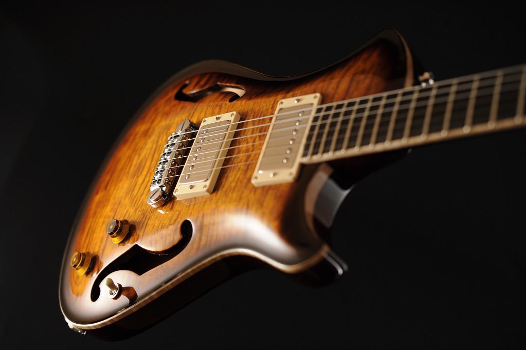 [LUTHIER] Springer Guitars - Page 4 _SEB9145