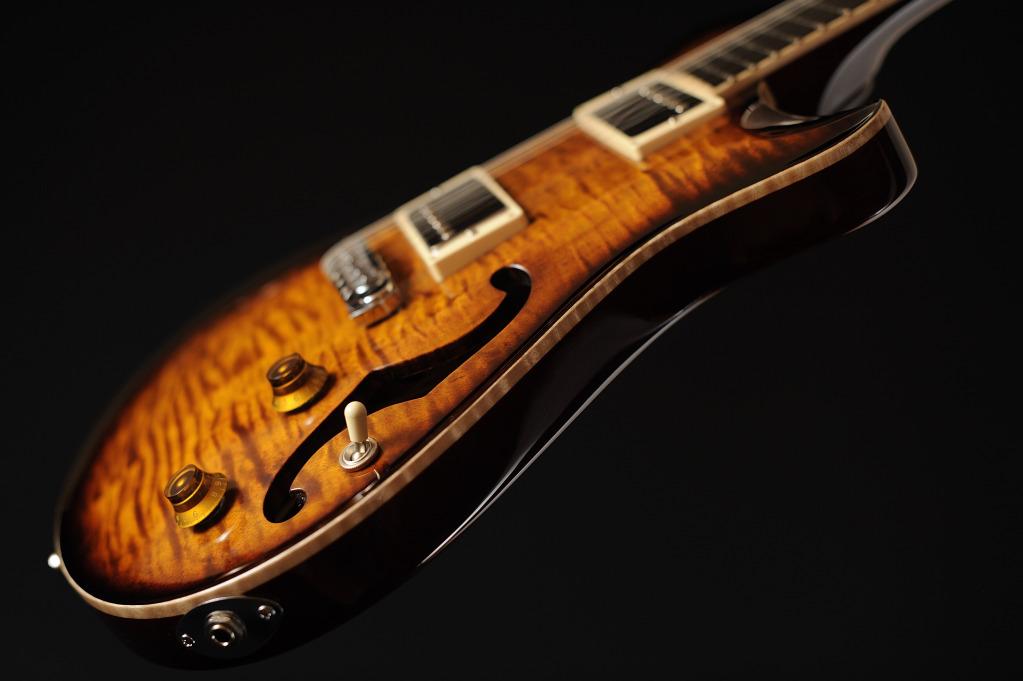 [LUTHIER] Springer Guitars - Page 4 _SEB9147