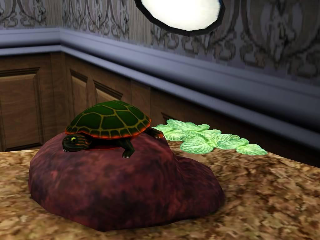 *New Contest* Weekly scavenger hunt!  Screenshot-116-1