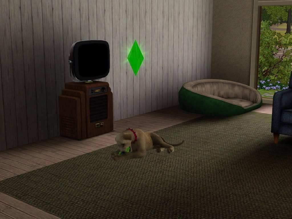 Pets Screenshot-13