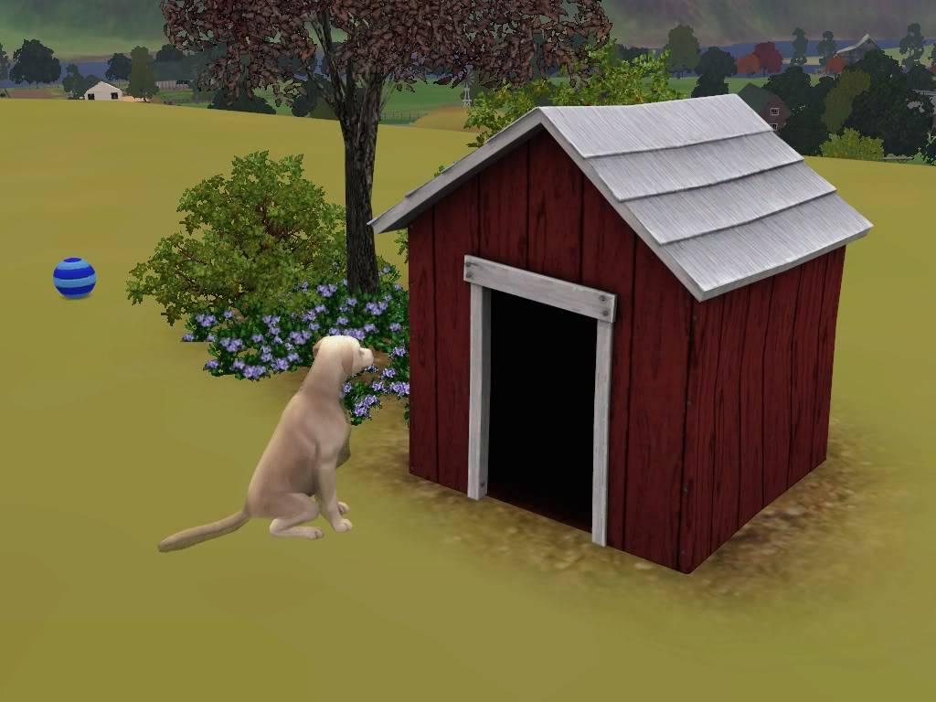 Pets Screenshot-3