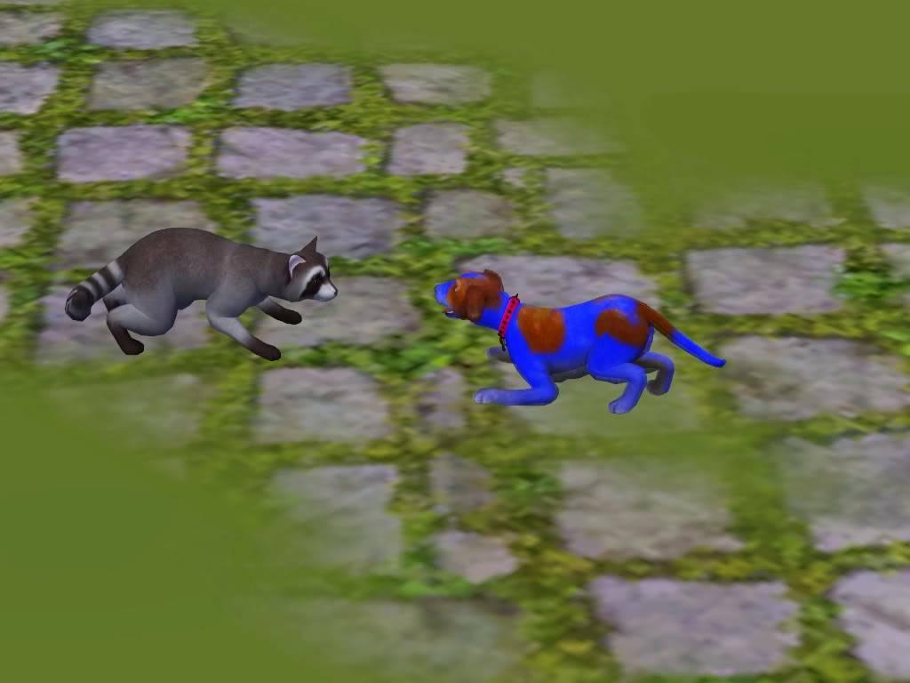 Pets Screenshot-44