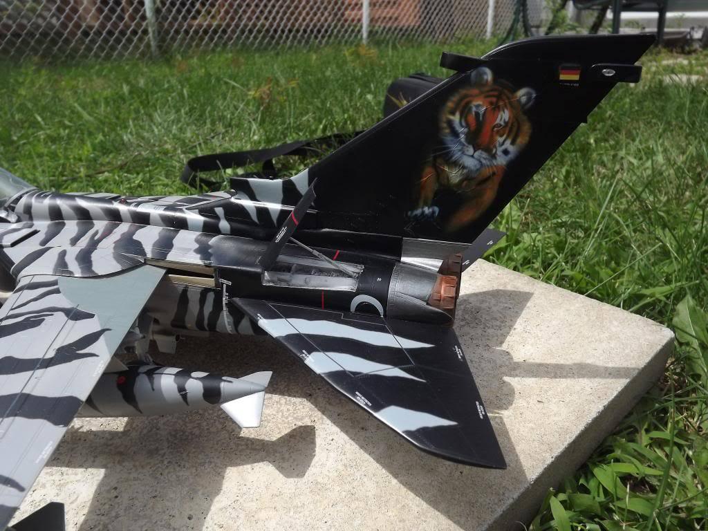 Tornado ECR Tigermeet de Revell au 1/32 DSCF1328_zps72a2cab4