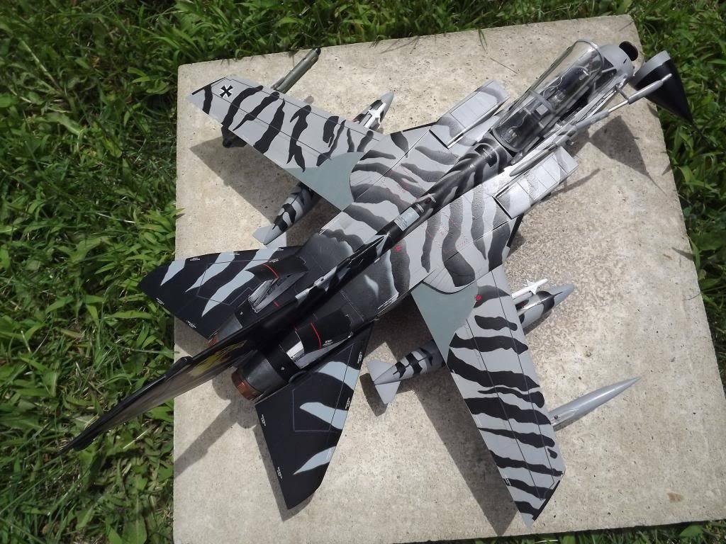 Tornado ECR Tigermeet de Revell au 1/32 DSCF1330_zps86681892