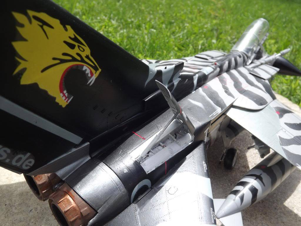 Tornado ECR Tigermeet de Revell au 1/32 DSCF1331_zps6fced23a