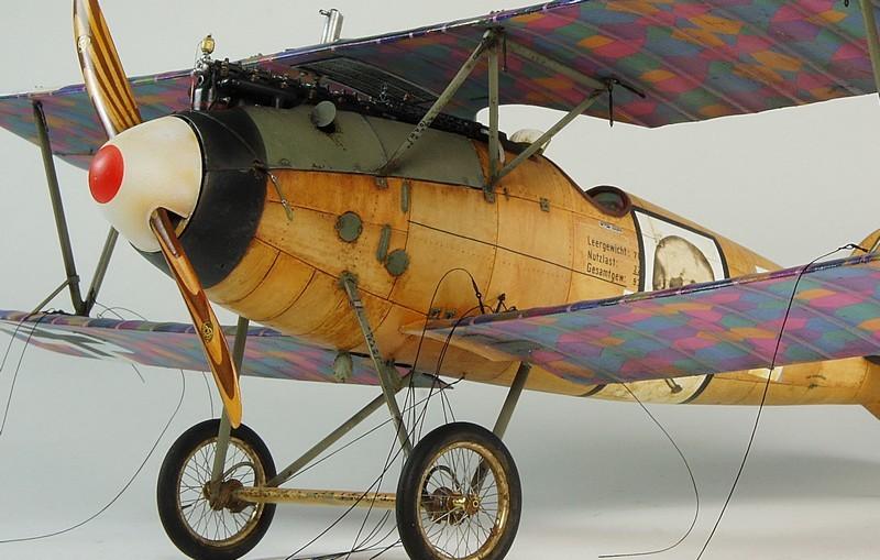 Albatros D.Va  Wingnut Wings DSC03934
