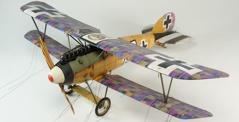 Albatros D.Va  Wingnut Wings DSC03938