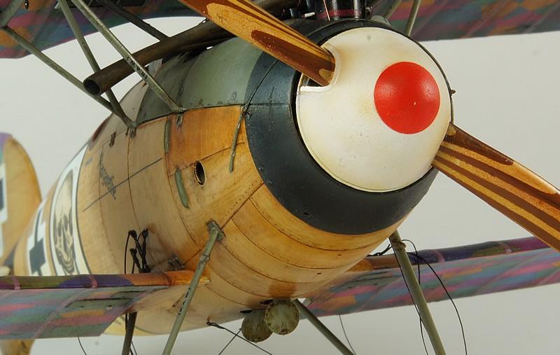 Albatros D.Va  Wingnut Wings DSC03944