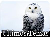Foro gratis : Intempestus Ultimos2