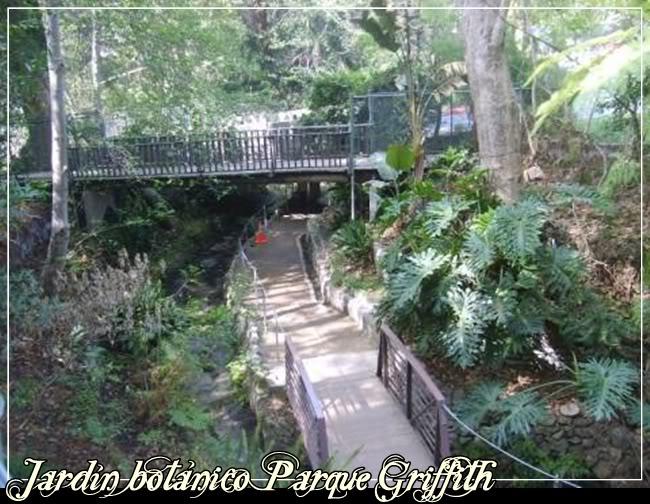 Jardín Botánico JardnbotnicoParqueGriffith