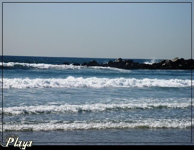 Playa del barrio Cheer PlayaenLosngeles