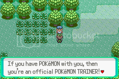 Let's Play Pokemon Emerald! 130