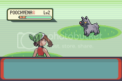 Let's Play Pokemon Emerald! 79
