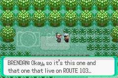 Let's Play Pokemon Emerald! 91