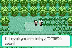 Let's Play Pokemon Emerald! 95