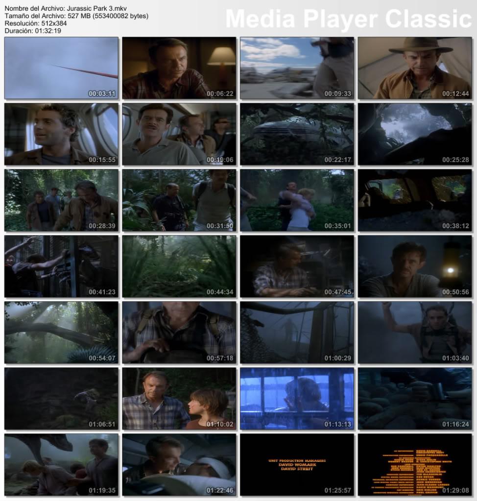 Jurassic Park 3 [MKV-DVDRIP-ESP]   JurassicPark3mkv_thumbs_20110921_154645