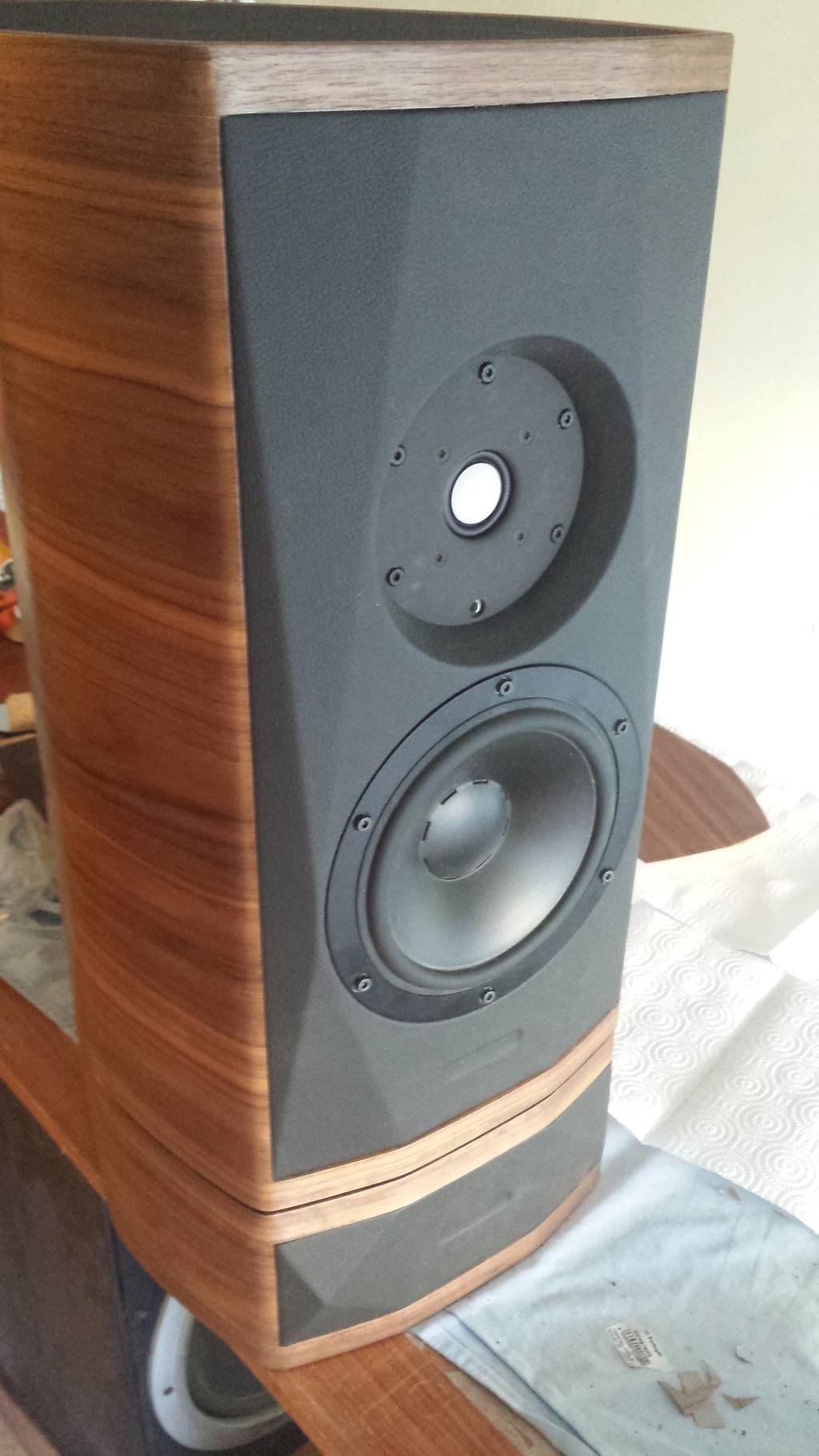 Monitores Audiotechnology C-Quenze 18H521706SD + Seas Excel T29MF001 - Página 6 20150801_085330_zpsi2yhjpl2