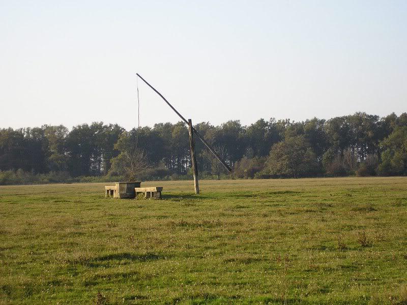 Gredsko polje-Konji PA173004