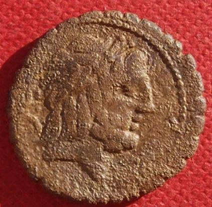 Denier République serratus Antonia 57eb58cf-adb3-4fe7-a8da-b5a9ceb19d8e