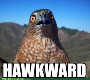 Rawr,a dinosaur appears (Throw a pokeball and I keeeeeeeeellllll you) Hawkward