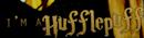 » Hufflepuff