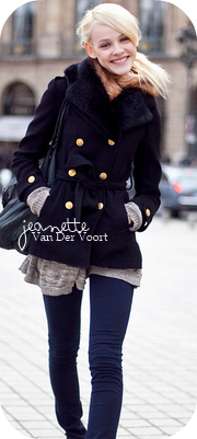 Jeanette A. Van Der Voort