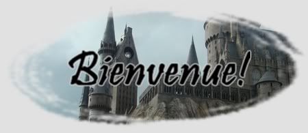 Harry Potter : Le monde parallèle Bienvenuehplmp