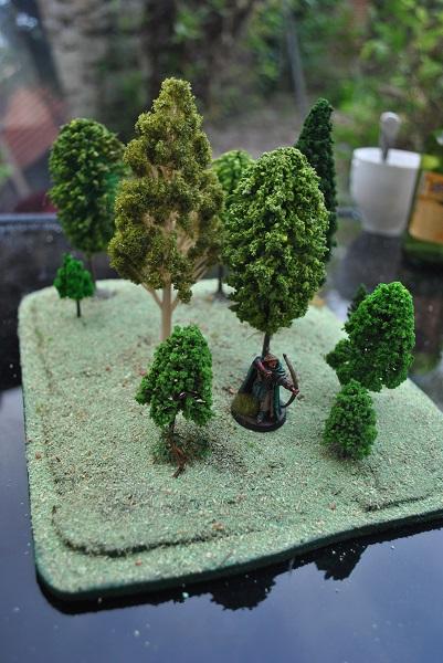 Forêt pour table DSC_0635
