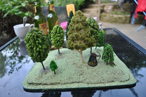 Forêt pour table DSC_0637