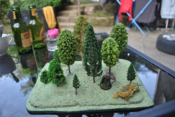 Forêt pour table DSC_0638