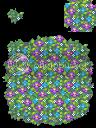 ซุ้มดอกไม้หลากสี Purpleblueflowers