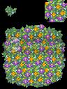 ซุ้มดอกไม้หลากสี Purpleflowers