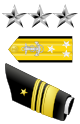 Squadron Leader/SQ CO