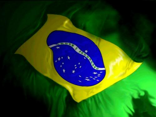 This is the end Bandeira_do_brasilD