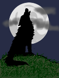 ICONS-AVATARS Iconwolf