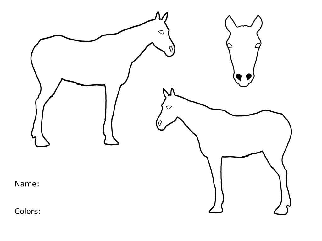 Create / Subscribe a Horse LINEART-1