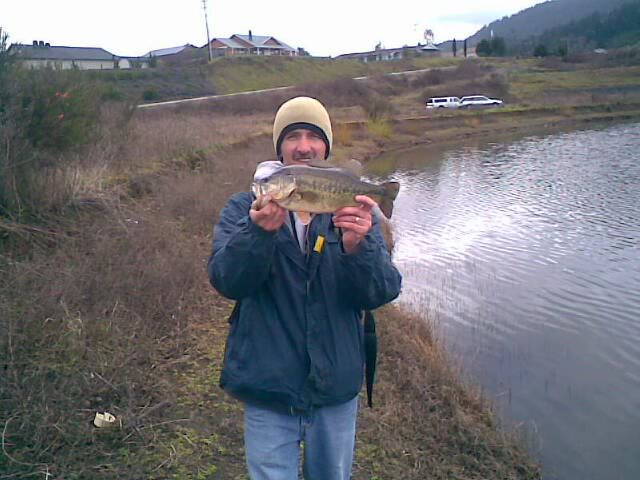 Fords Pond(pic) Largemouth