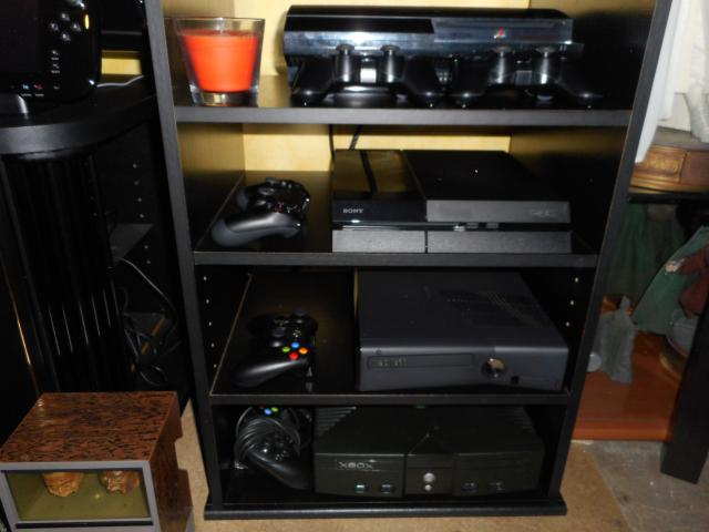 Collection yan67 : Arrivées Jeux PS1(19) et NES  p5 : 07/09/16 DSCN0148_zps61d301c4