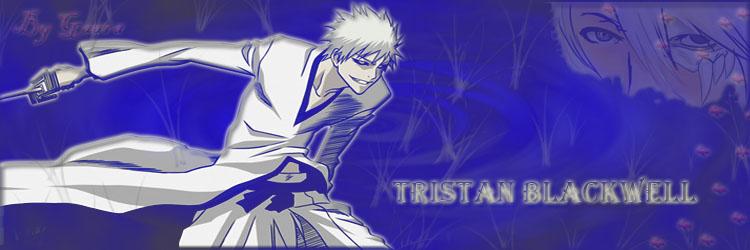 ¿Os gusta más este diseño de foro o el anterior? Tristan1